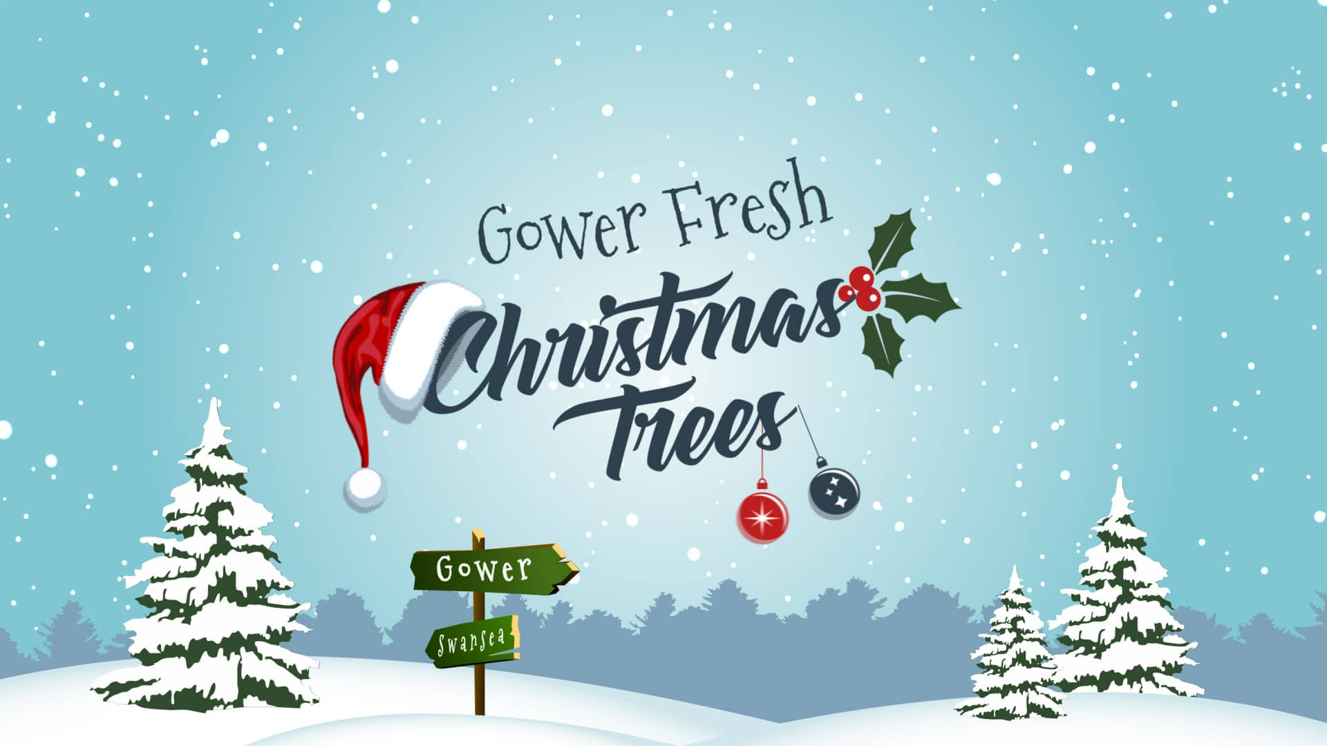 gower fresh christmas trees swansea winter wonderland banner