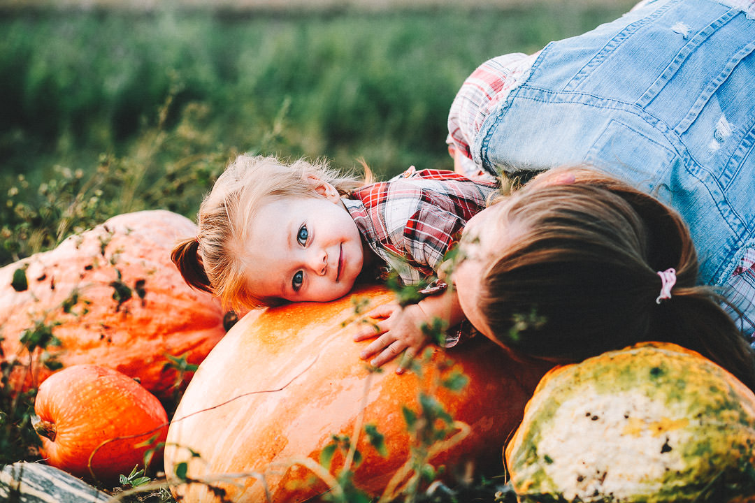 Pick Your Own Gower grown pumpkins- pick your own pumpkin at Gower Fresh Christmas trees farm